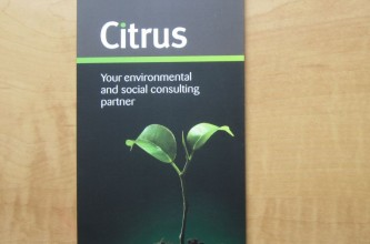 Brochure for Citrus Partners